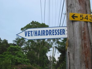 denistone-sign-vet-hairdresser-usg