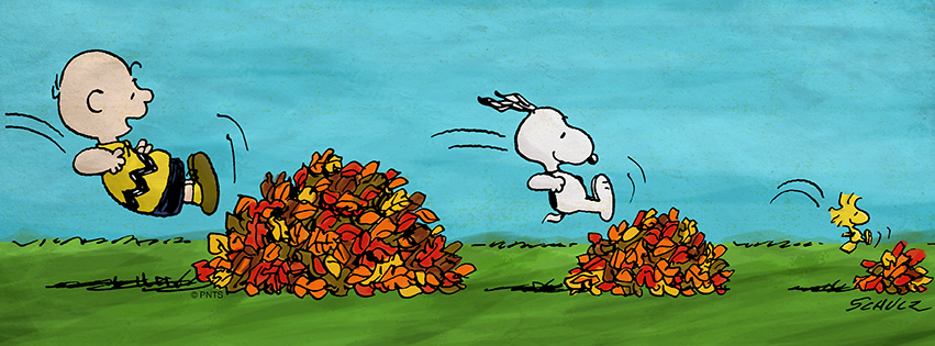 Image result for Snoopy autumn