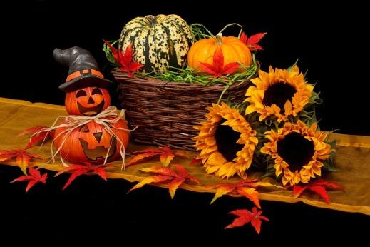 autumn-20461_960_720