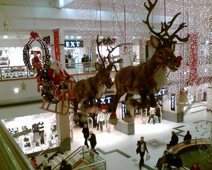 Reindeer in Nottm 3 05