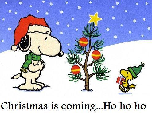 77533ec1ec42d17ecd6557849e5ea237--christmas-snoopy-christmas-is-coming