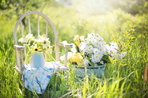 summer-still-life-779386_960_720