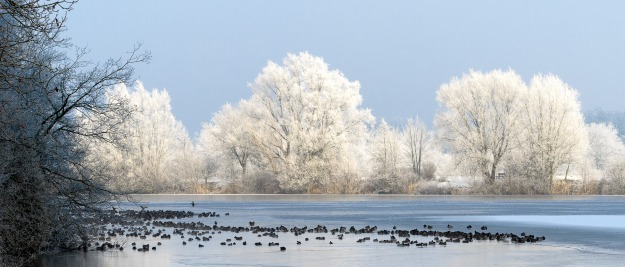 winter-3254054_1920