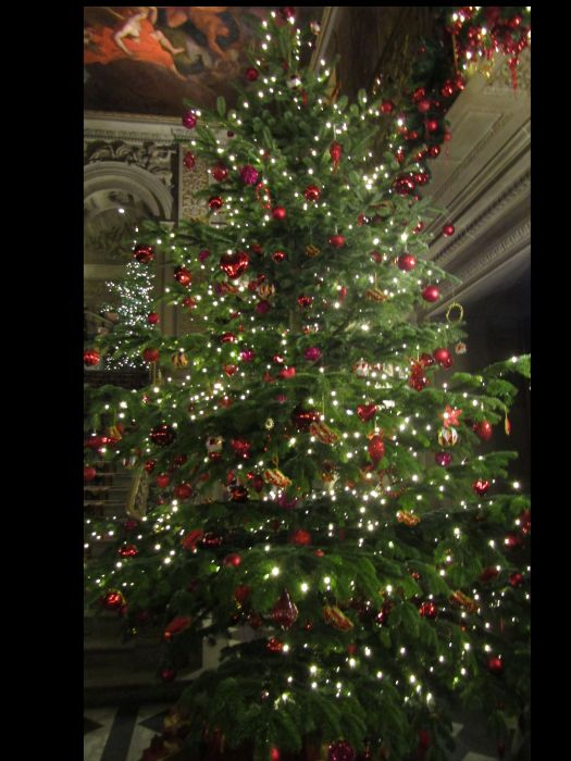 Christmas Tree Chatsworth