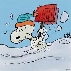 f2e9ed9c4e6b598cb4b93e768dc4b765--peanuts-cartoon-peanuts-snoopy