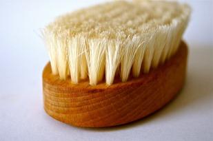 brush-96242_1920